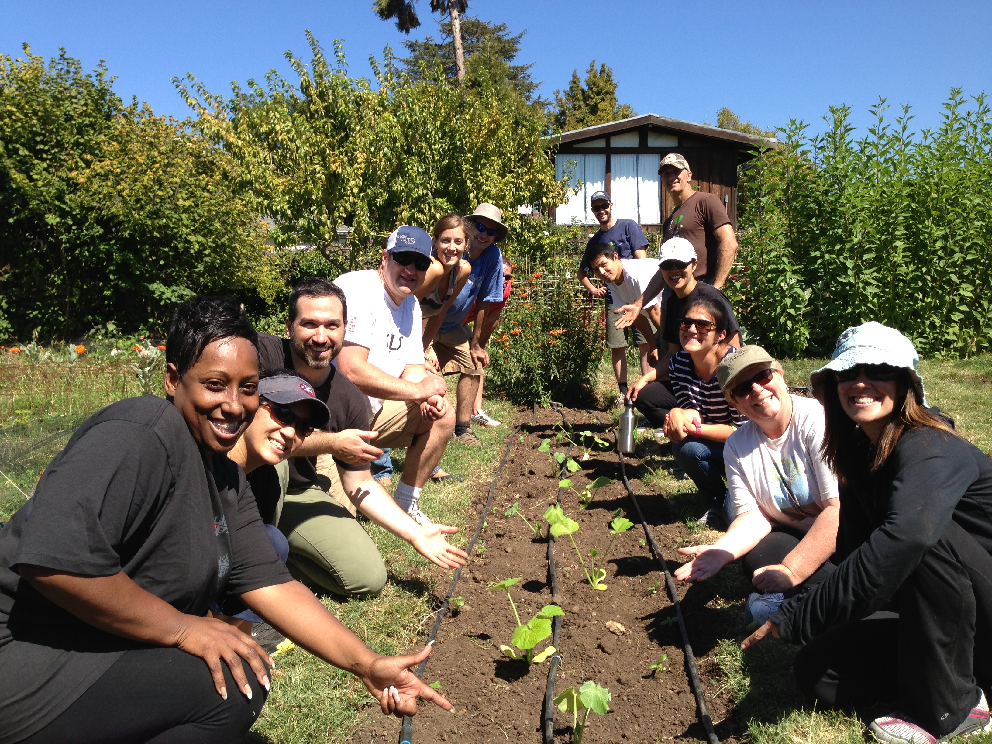 Clif Bar & Company gives employees time off to collectively complete a goal of 10,400 volunteer hours annually. Here, employees volunteer at an edible schoolyard garden in the San Francisco Bay Area