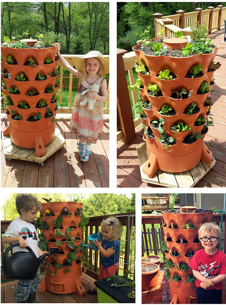 Garden Tower Project | Green America