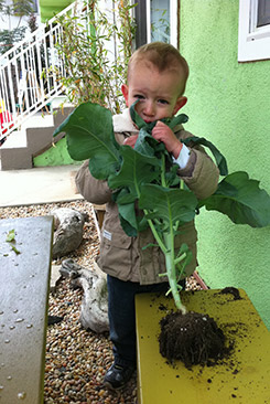 kid with plants