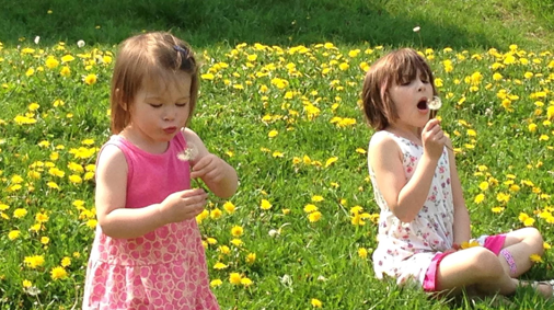 girls in field of dandelions