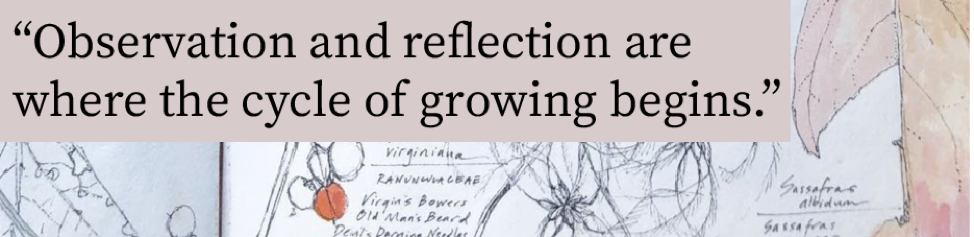 "Garden sketch with quote: ""Observation and reflection are where the cycle of growing begins."""