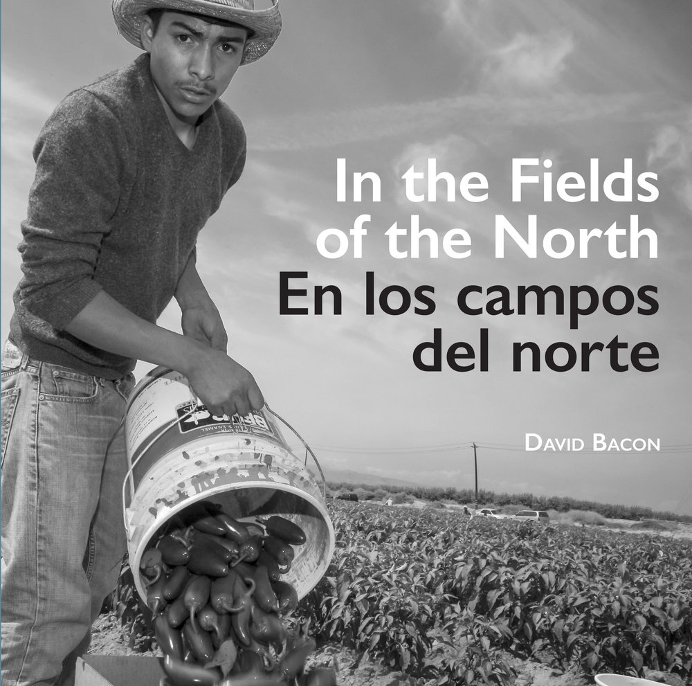 "cover of ""In the Fields of the North"""
