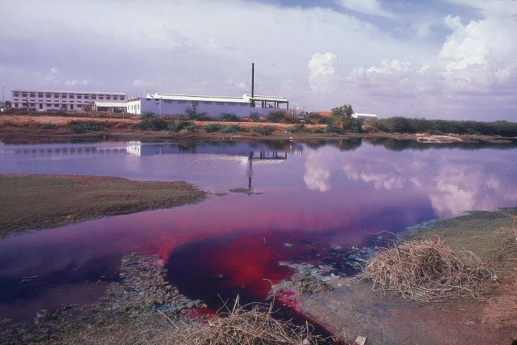 river dyed purple from factories