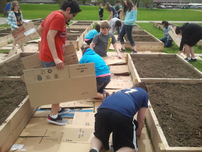 kids work around garden beds filled with soil, covering the grass with cardboard to mulch the paths