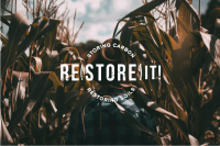 Re(Store) It! Storing Carbon, Restoring Soils