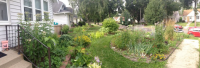 Diverse Climate Victory Garden