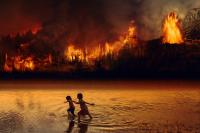 children in front of forest fire