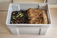 indoor composting bin showing food scraps and soil