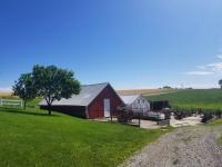 Farm in Kalona, IA