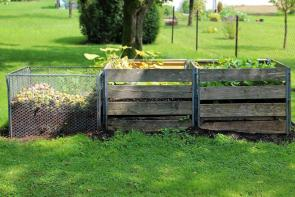 Composting Tuesday:  A Worm Bin is a Great Solution for Urbanites