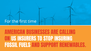 For the first time, American businesses are calling on US insurers to stop insuring fossil fuels and support renewables.