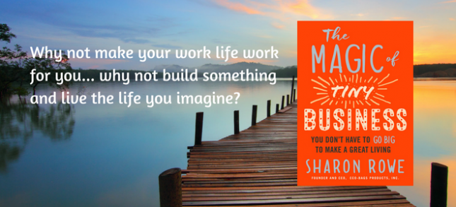 """The Magic of Tiny Business"" book next to text reading ""Why not make your work life work for you... why not build something and live the life you imagine?"""