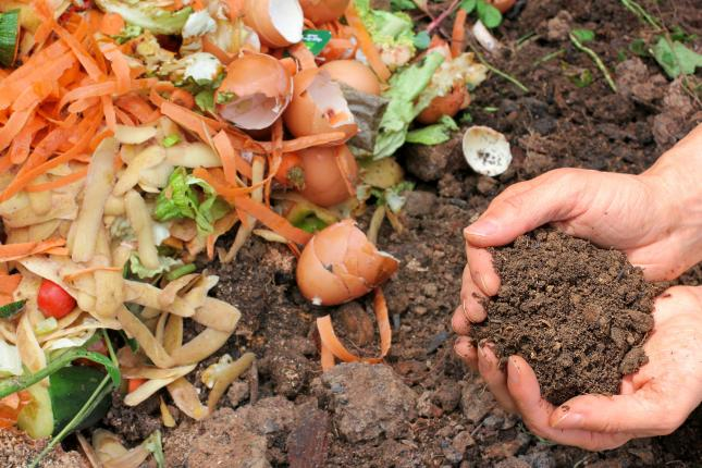 food scraps and hands holding compost, organic fertilizers for your climate victory garden