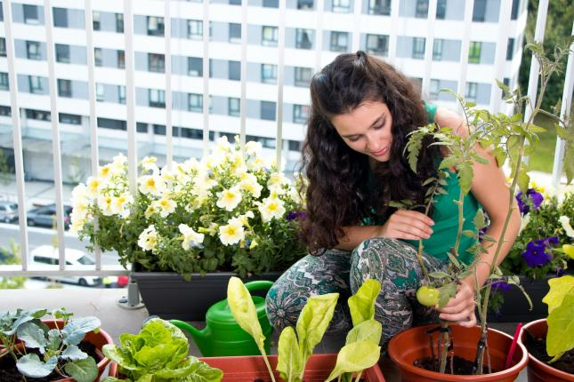 woman growing food in containers on balcony
