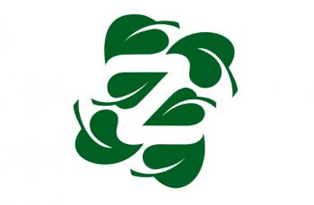 Natural Zing logo