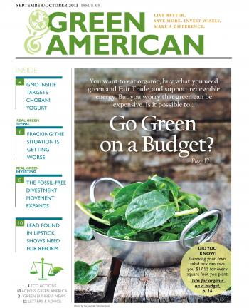 Go green on a budget cover