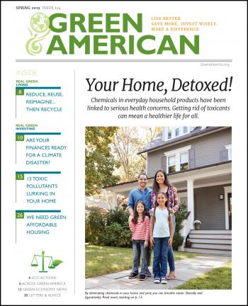 Cover of your home detoxed