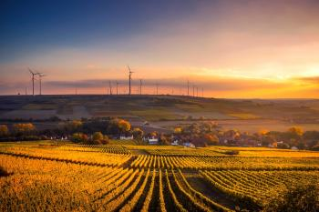 agriculture field with windmills